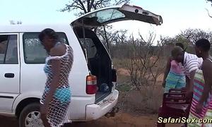 Wild african safari copulation orgy